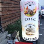 六本木のハリネズミカフェ【HARRY】へ行ってみた!